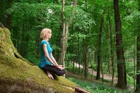meditation foret